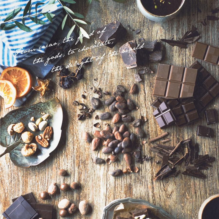 神の食べ物カカオからチョコレートができるまで
