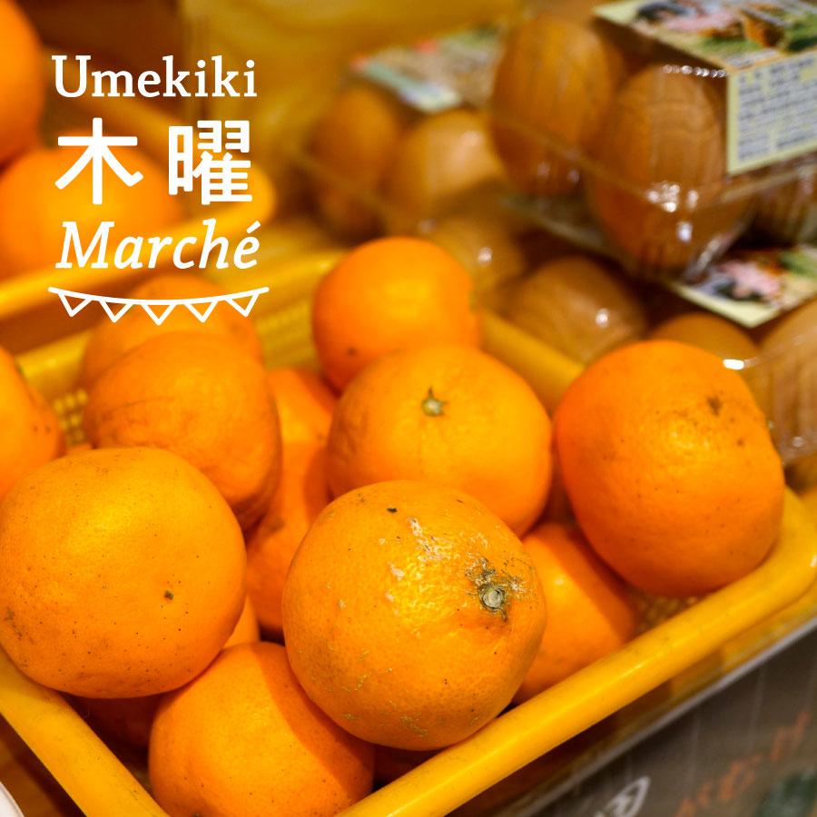 Umekiki 木曜 マルシェ -2月2日-