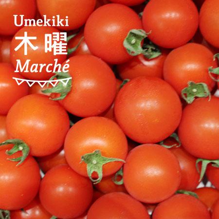Umekiki 木曜 マルシェ -5月5日-