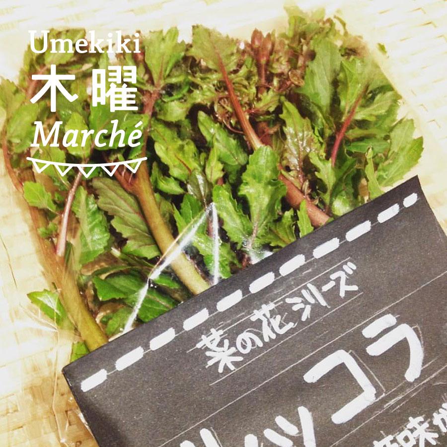 Umekiki 木曜 マルシェ -4月13日-