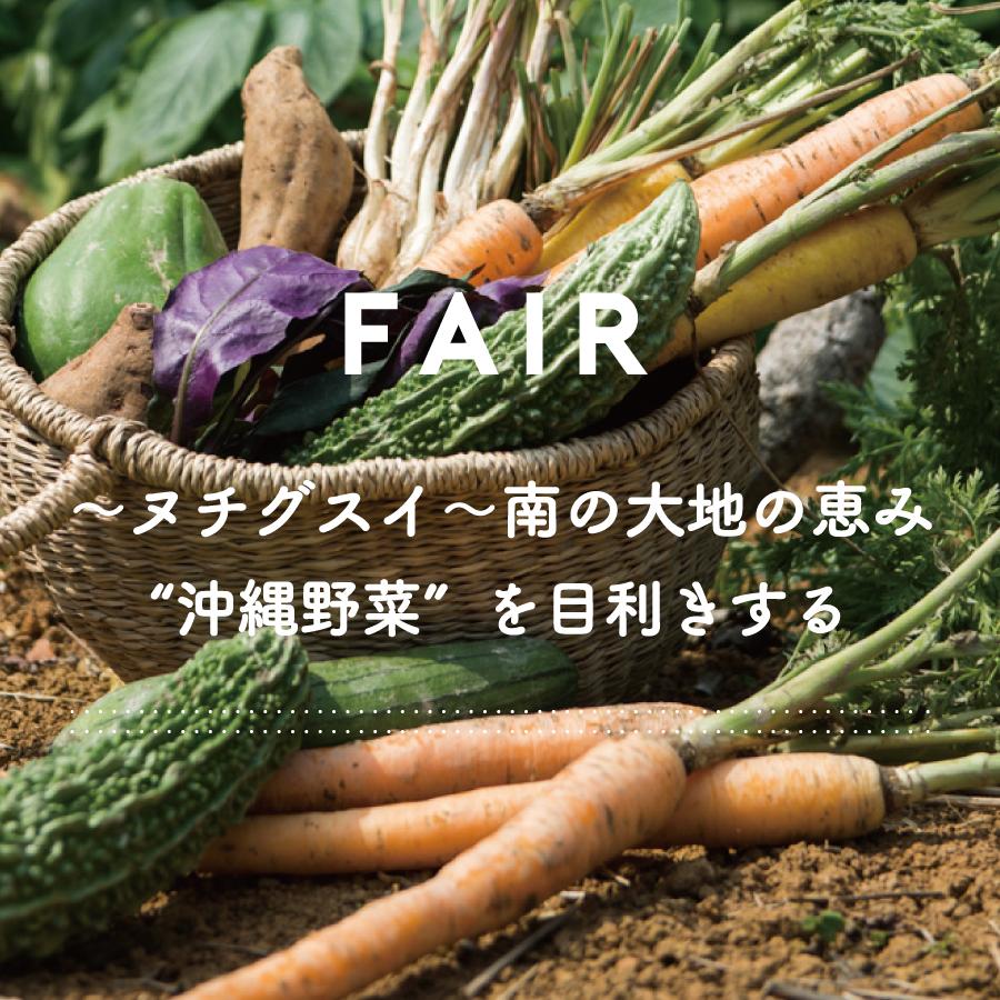 """FAIR『〜ヌチグスイ〜南の大地の恵み""""沖縄野菜""""を目利き』"""