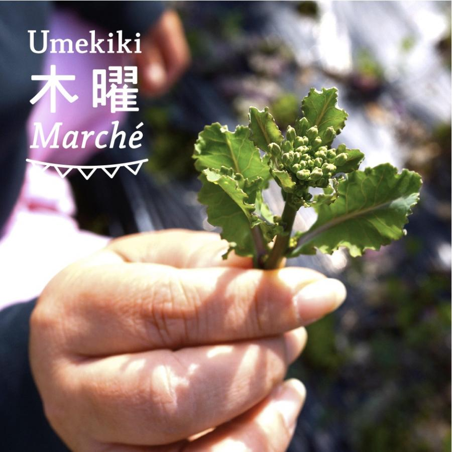 Umekiki 木曜 マルシェ -4月16日-