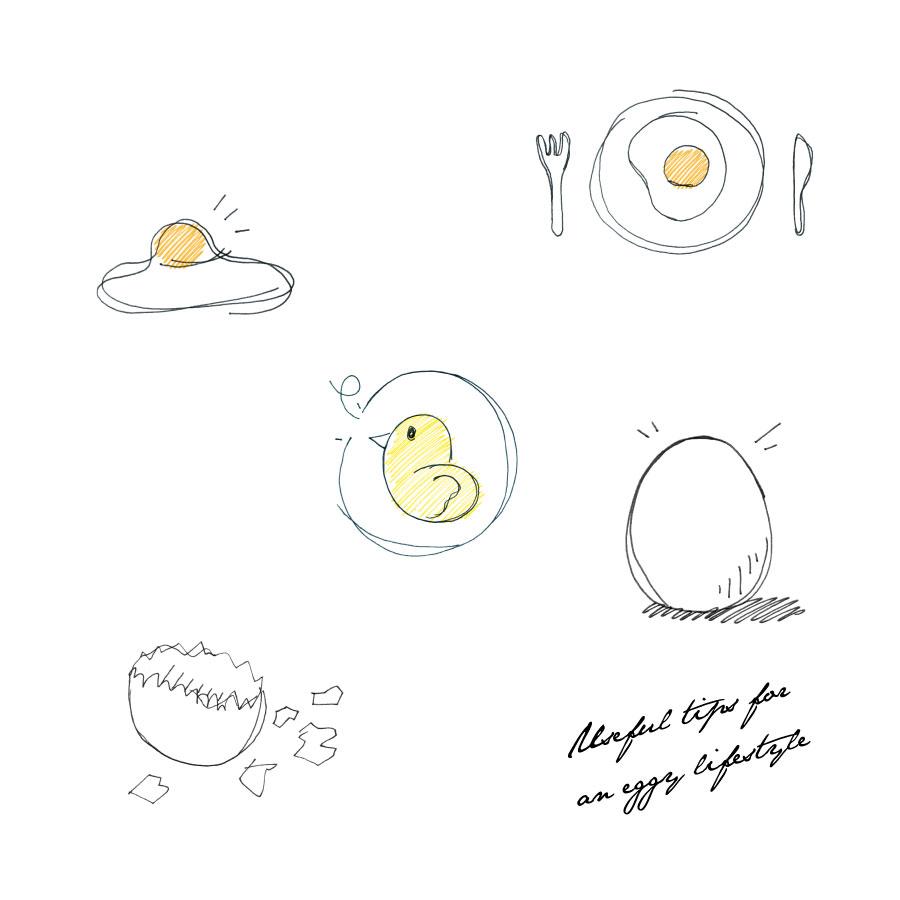 毎日に役立つ卵のうんちく