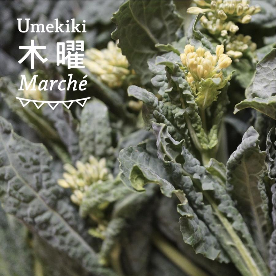Umekiki 木曜 マルシェ -5月7日-