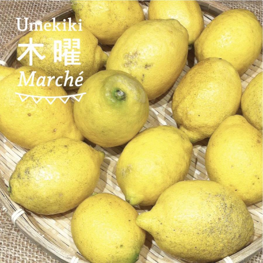Umekiki 木曜 マルシェ -6月25日-