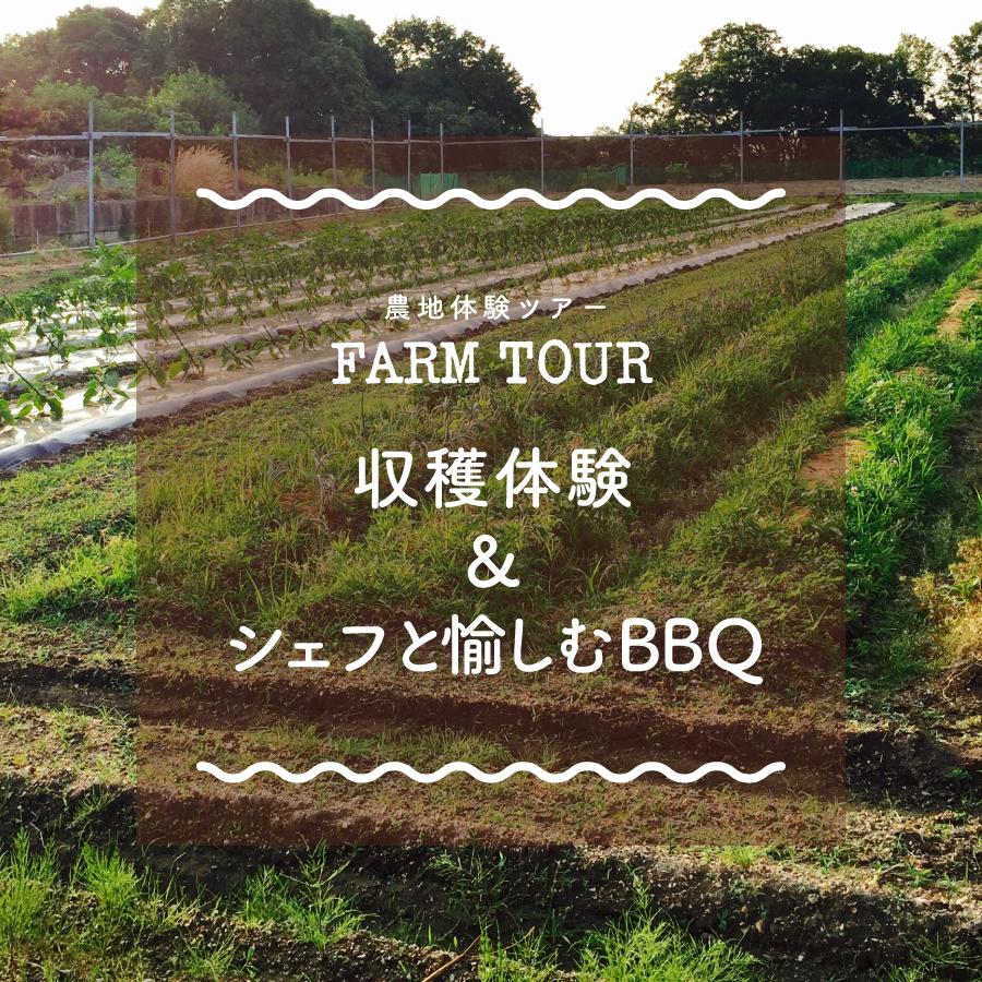 農地でBBQツアー-収穫体験&シェフと愉しむBBQ-