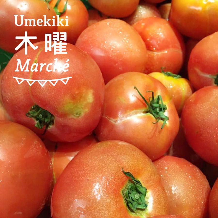 Umekiki 木曜 マルシェ -8月16日-