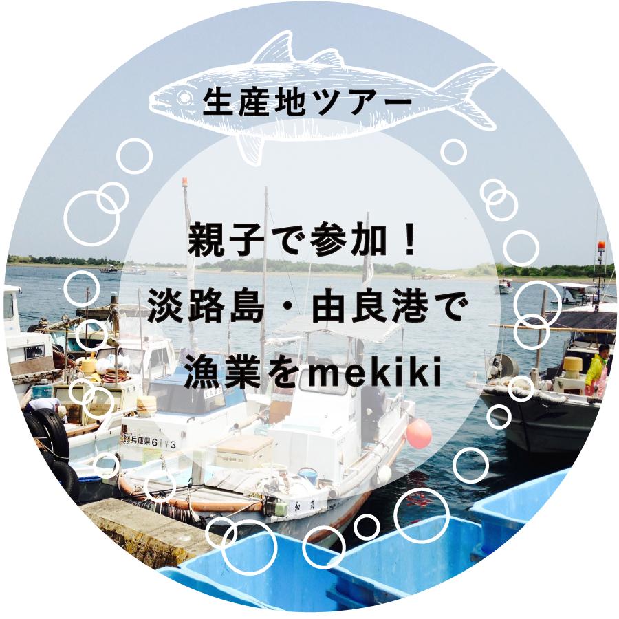 生産地ツアー 淡路島・由良港で漁業を親子でmekiki!