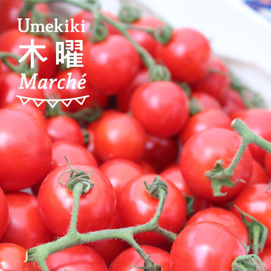 Umekiki 木曜 マルシェ -10月13日-