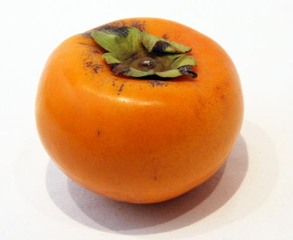 和歌山県海草郡紀美野町の富有柿