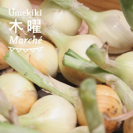 Umekiki 木曜 マルシェ -6月13日-