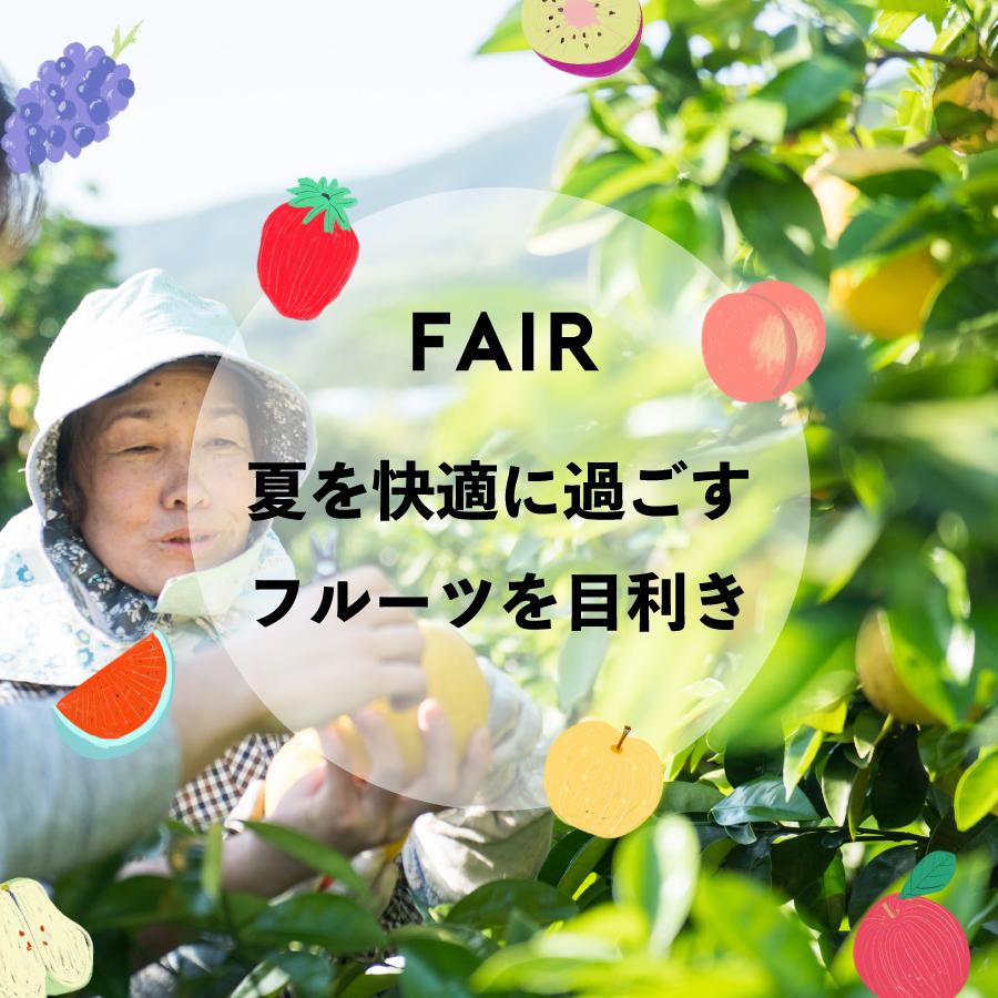 FAIR『夏を快適に過ごすフルーツを目利き』