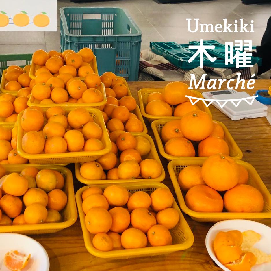 Umekiki 木曜 マルシェ -12月5日-