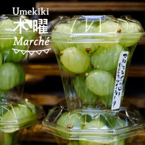 Umekiki 木曜 マルシェ -2020年1月30日-