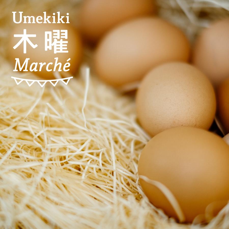 Umekiki 木曜 マルシェ -2020年11月19日-