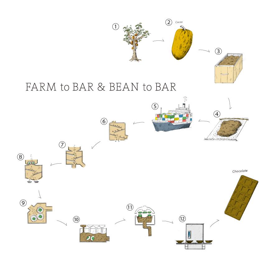 FARM to BAR & BEAN to BAR