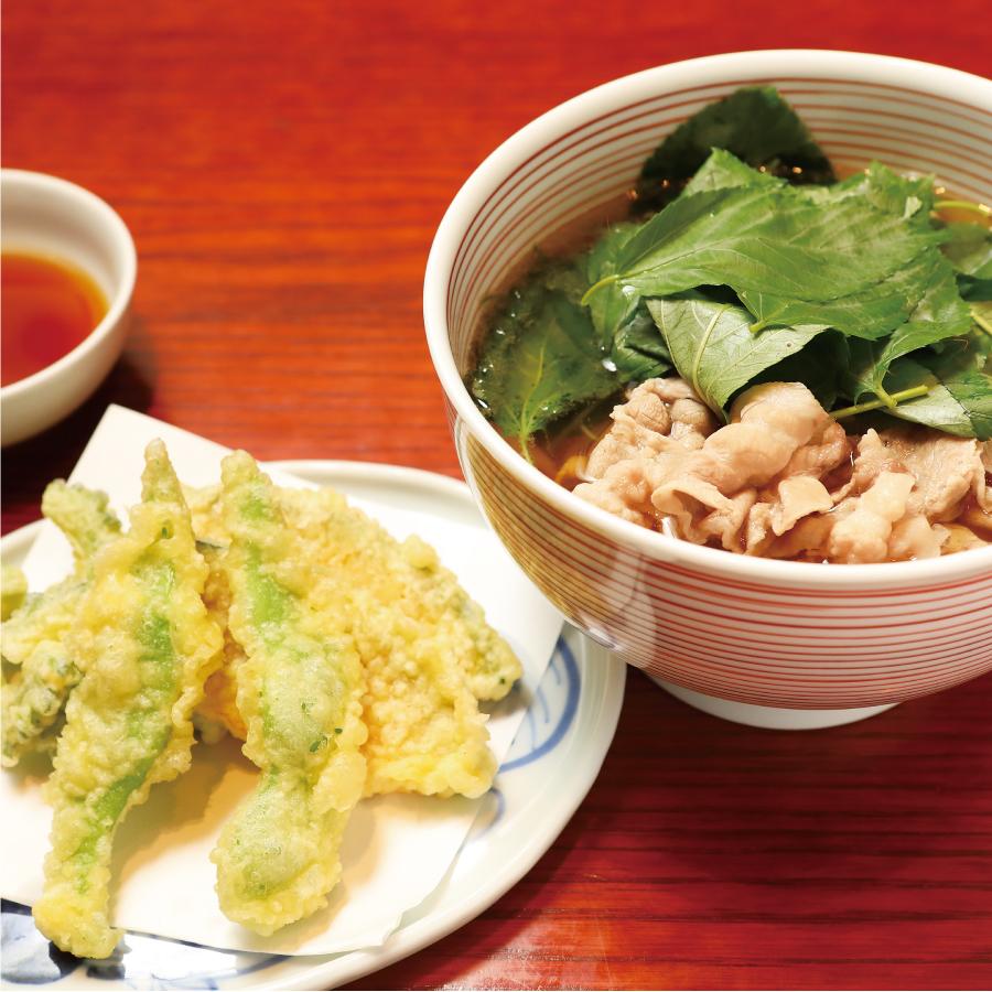 島野菜天とハリハリうどん定食